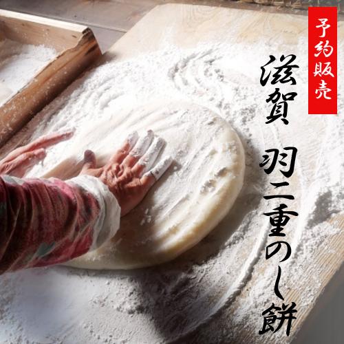 【お正月限定つきたて餅】羽二重のし餅・滋賀県産もち米・新米 半のし1枚(ご注文12/20〆切)