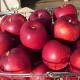 【青森のりんご園から直送】 紅玉100%無添加りんごジュース3本