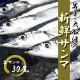 岩手県・大船渡の【新鮮サンマ】30尾