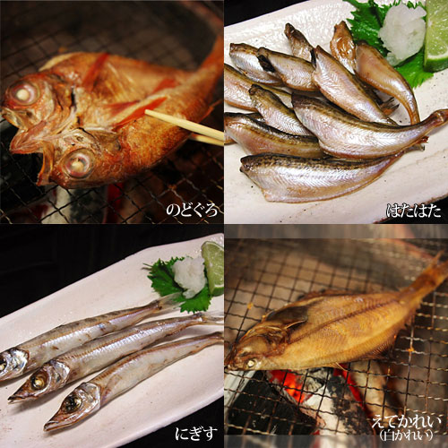 《島根沖・一日漁で獲れた新鮮地魚》大粒しじみも入った昔ながらの干物セット〜朝凪〜