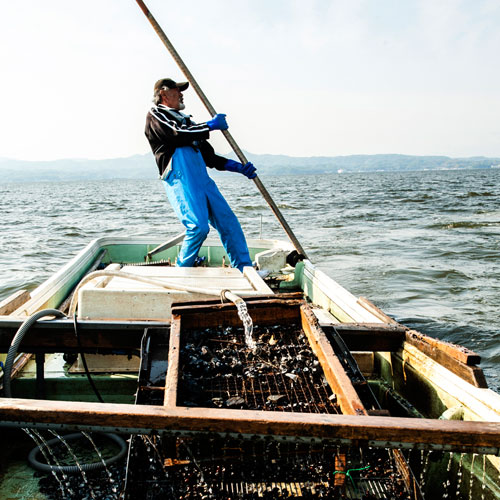 《島根沖・一日漁で獲れた新鮮地魚》大粒しじみ・穴子も入った豪華な干物セット〜夕凪〜