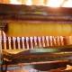 讃岐伝統の高級和三盆を使ったシカ特製【和三盆ブリュレ】