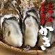 北海道厚岸で漁獲、殻付き牡蠣 【LLサイズ20個】★カキナイフ付き