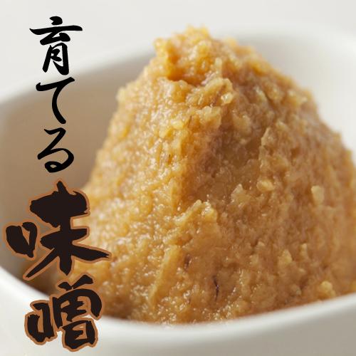 【仕込みたて】育てる味噌(〆切10月29日)限定15セット