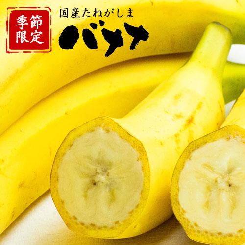 【季節限定】国産たねがしまバナナ★中サイズ約15本★ (販売終了10/25予定)