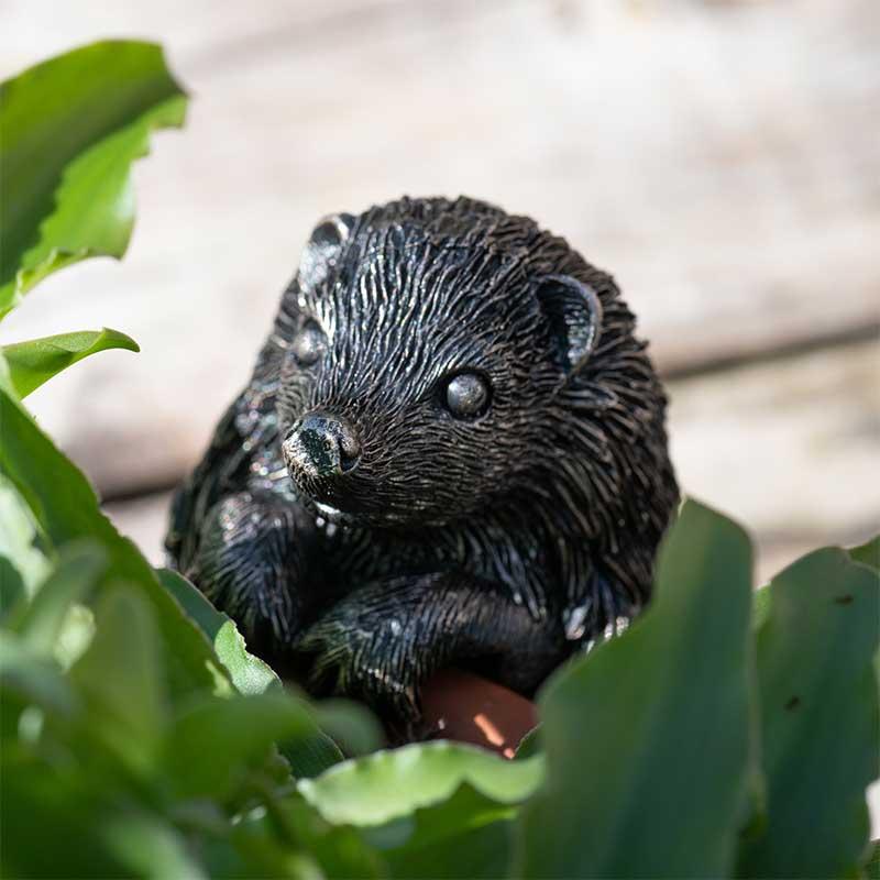 ポットバディー Pot Buddies Hedgehog
