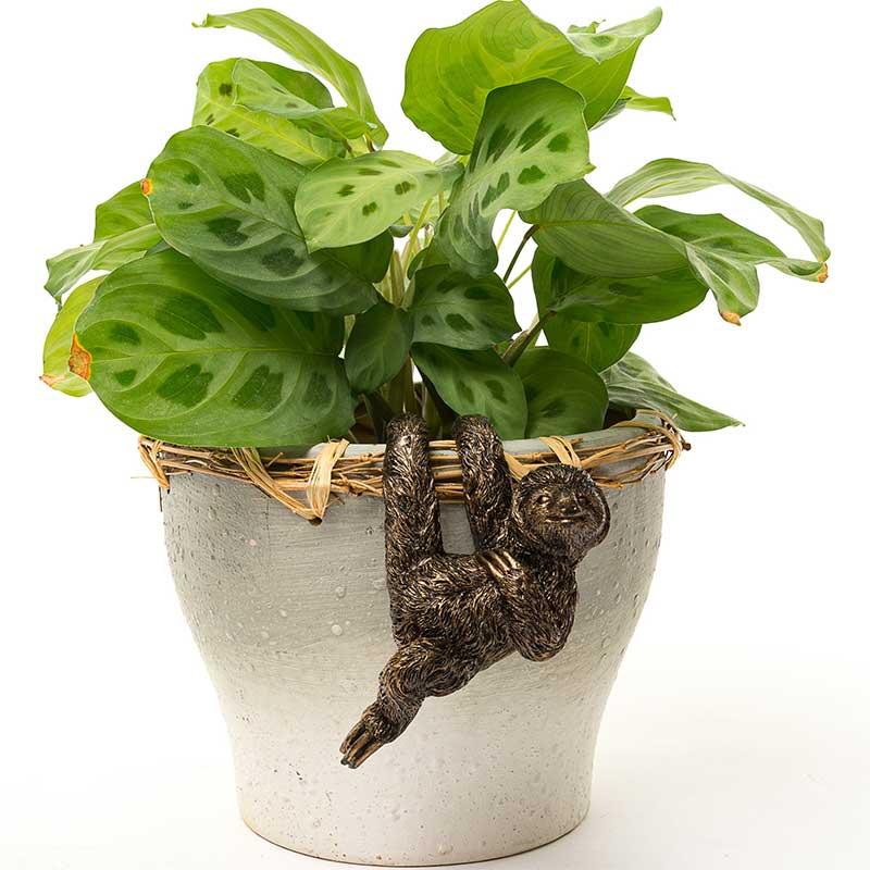ポットバディー Pot Buddies Sloth