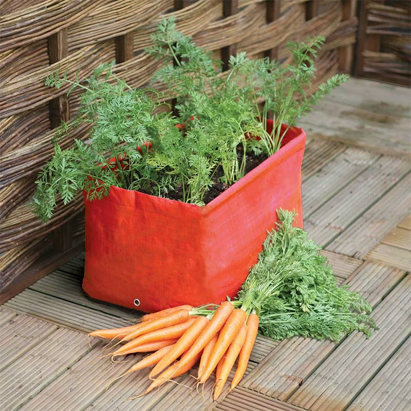 Haxnicks プランターバッグ キャロット Carrot Patio Planter, 2-pack