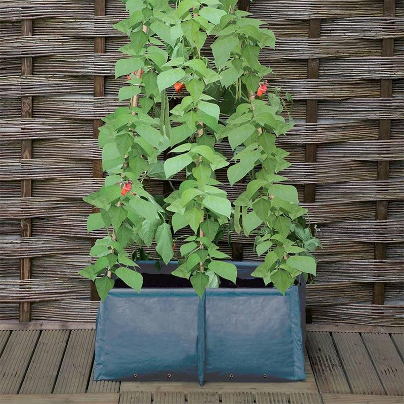 Haxnicks プラントバッグ Pea & Bean Patio Planter
