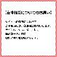 LOUIS VUITTON ルイヴィトン ナノスピーディー 2カラー 16×11×9 GEKIYASU A-00153 2021/04/07登録