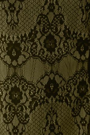社交ダンス衣装 カラオケ衣装 レディースウェア ブラウス 脇ひもメッシュレースデザイントップス ベージュ
