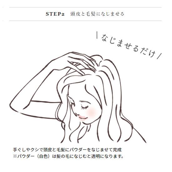 5450 フジコ FPPパウダー8.5g ヘアセット スタイリング 頭皮の制汗・消臭 ボリュームアップ まとめ髪 無造作ヘア 自然【送料無料】