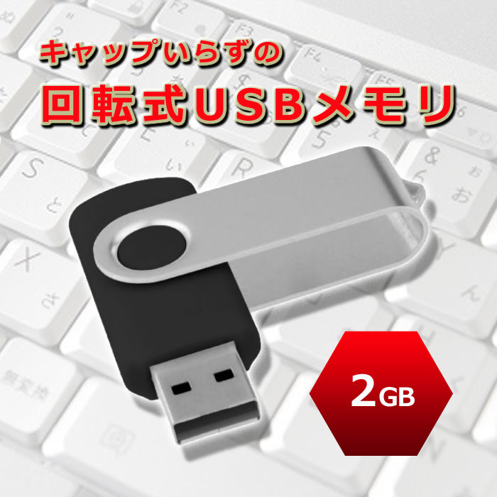 4921 大容量はいらない!とにかく安く!という方へ。激安 USBメモリ WT-UF20L-2GB【ネコポス対応】