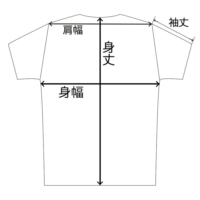 【ロッテアライリゾート】ARAI オリジナルTシャツ MountainLogo BK