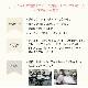 【日本製】ショートグローブ / オーガンジー / パール&ギャザー ★お取り寄せ商品★ ご注文から3-5営業日以内に出荷可能・結婚式・花嫁