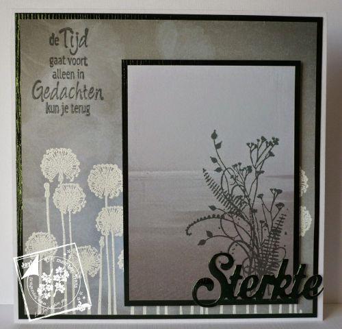 6002-0413/Joy! Crafts/ジョイ・クラフツ/ダイ(抜型)/Sterkte flower 励まし オランダ語 テキスト  花 オランダカイウ