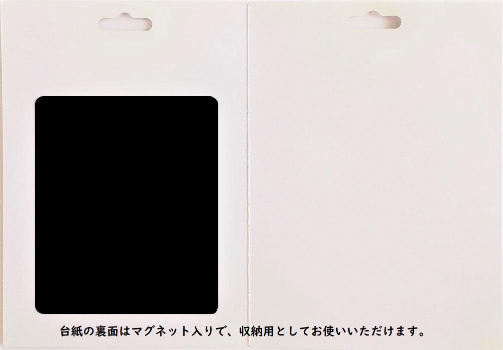W04-004/WonderHouse/ワンダーハウス/ダイ(抜型)/4アイコン スクール セット