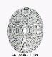 訳あり商品 数量限定限り!!485E/Tonic Studios/トニック・スタジオ/ダイ(抜型)/Oval Nesting オーバル レイヤー