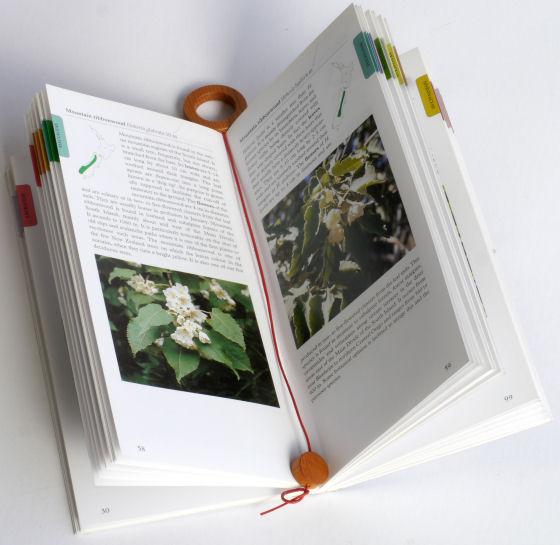 【木製文具】【木のしおり】 ウッディリングブックマーク