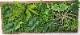 【人工観葉植物】【壁面緑化】【グリーンボード【【グリーンパネル】【グリーン壁掛け】触媒加工済み 送料無料