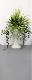 【人工観葉植物】【ミックスグリーンプランター】【屋外使用可】【送料無料】