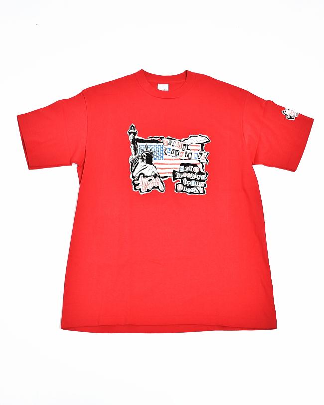 (USED29) DEADSTOCK (デッドストック) 1990's STUSSY (90年代 ステューシー) LIVE IN NYC TEE 【メール便対応可・メール便送料無料】