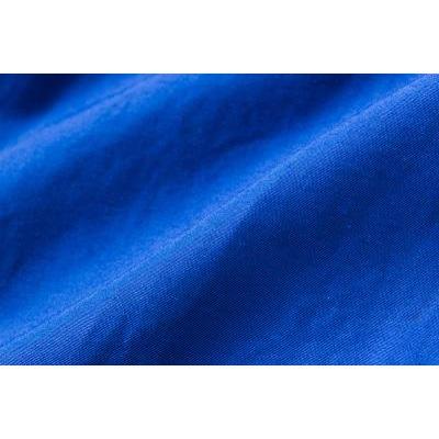 レリック チノパン ブルー