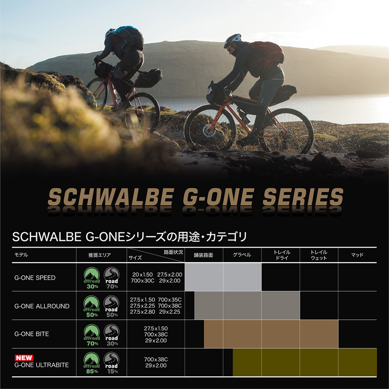 シュワルベ ジーワン スピード Evolution 20インチ(406) チューブレスレディ フォルダブル
