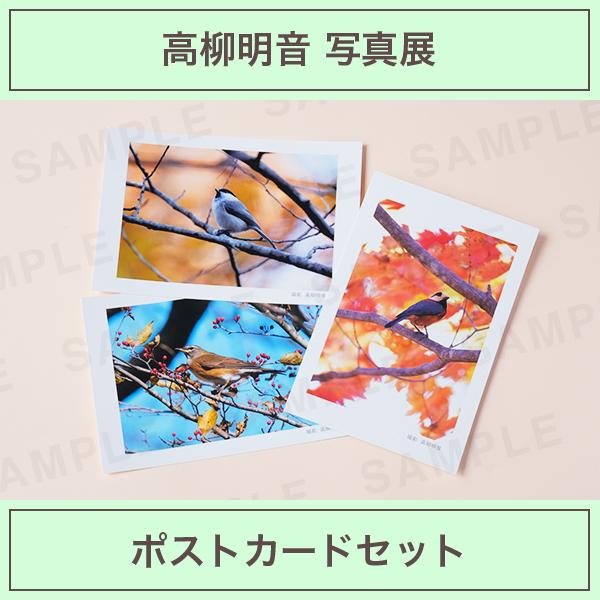 高柳明音|ポストカード3枚セット