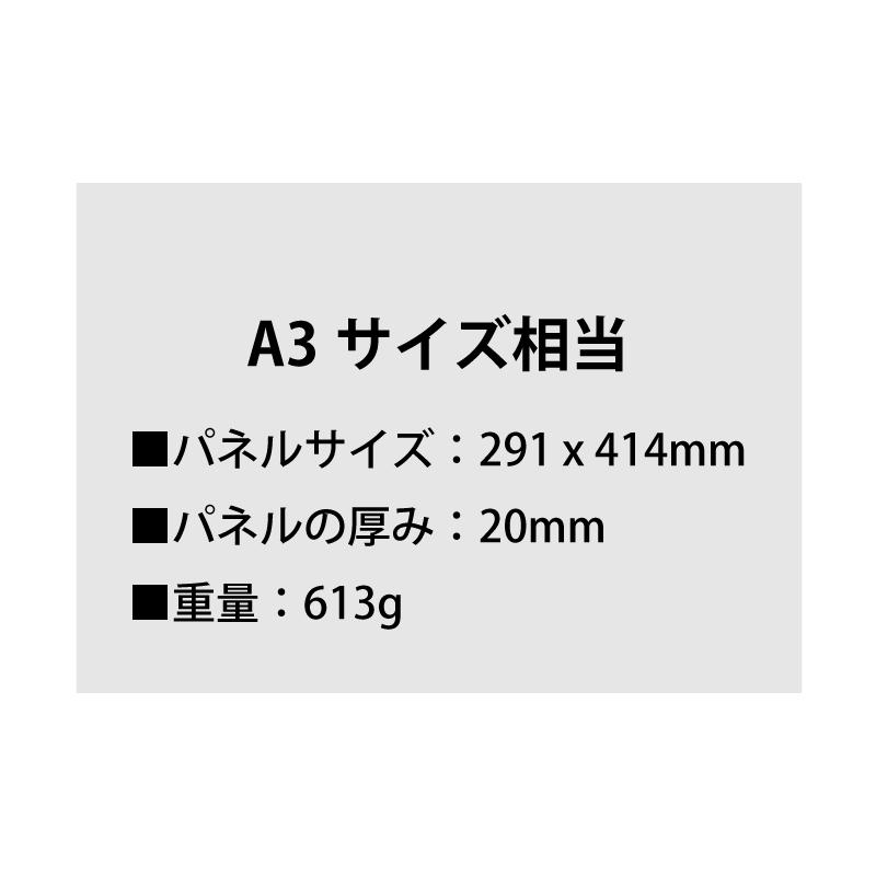LIVE STREAMERS 池内彩夏 写真パネル WALLDECOR(全4種)