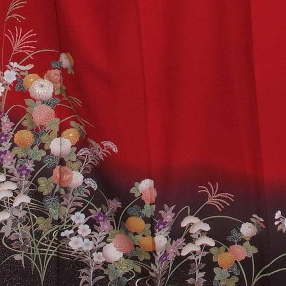 格安!振袖レンタル(2〜11月) 卒業式 結婚式 赤 秋の七草 【送料無料】【試着可能】 510h3