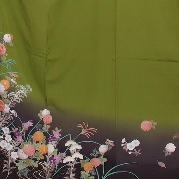 格安!振袖レンタル(2〜11月) 卒業式 結婚式 緑 うぐいす色秋の七草 【送料無料】【試着可能】 510h8