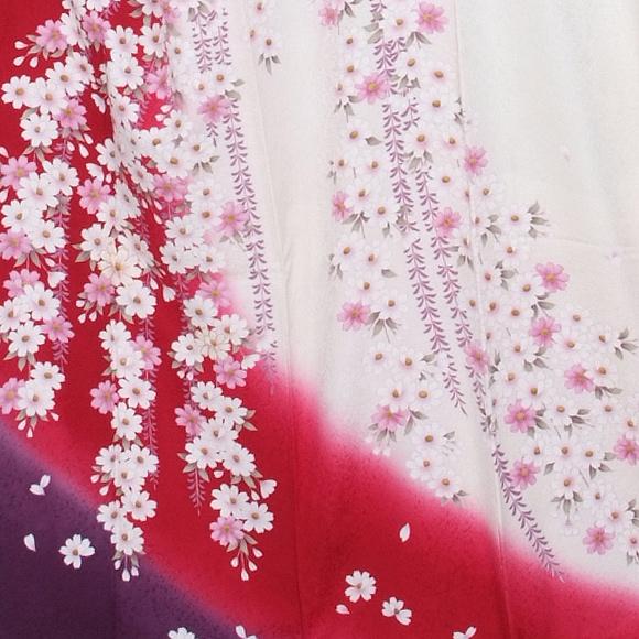格安!振袖レンタル(2〜11月) 卒業式 結婚式 など 赤と白 染め分けに紺 【送料無料】【試着可能】51122