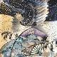 格安!着物・お宮参り レンタル フルセット 初着 男児 絽 たたきに鷹【送料往復880円】100014