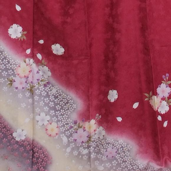 格安!振袖レンタル 成人式 ローズピンク黄色ぼかし桜【送料無料】【試着可能】51108