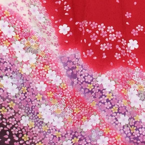 格安!振袖レンタル (2〜11月) 卒業式 結婚式 など 赤地に小花 【送料無料】【試着可能】51133