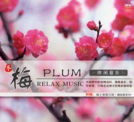 梅 癒し音楽 CD1枚 中国音楽CD/梅 休闲音乐 �胶CD