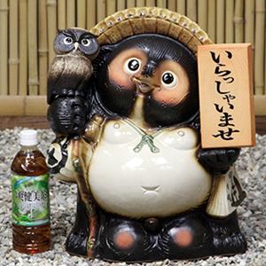 信楽焼きたぬき 13号ふくろう持ち表札狸 陶器タヌキ[ta-0254]