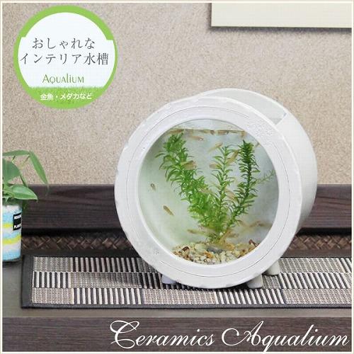 陶器水槽 信楽焼の丸型水槽(白)[su-0125]