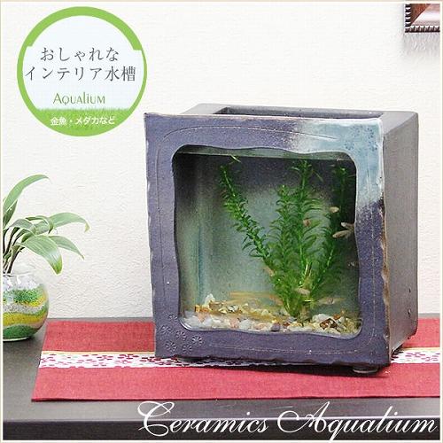 陶器水槽 信楽焼の角型水槽(黒)[su-0124]
