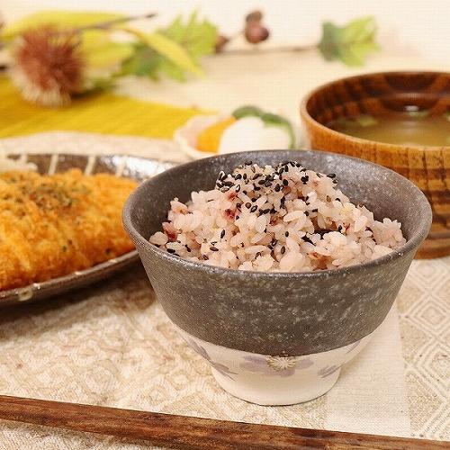 信楽焼 紫桜飯碗 w310-11