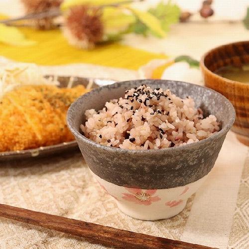 信楽焼 桃桜飯碗 w310-12