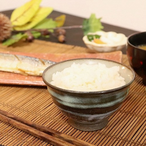 信楽焼 夕焼け飯碗 w311-02