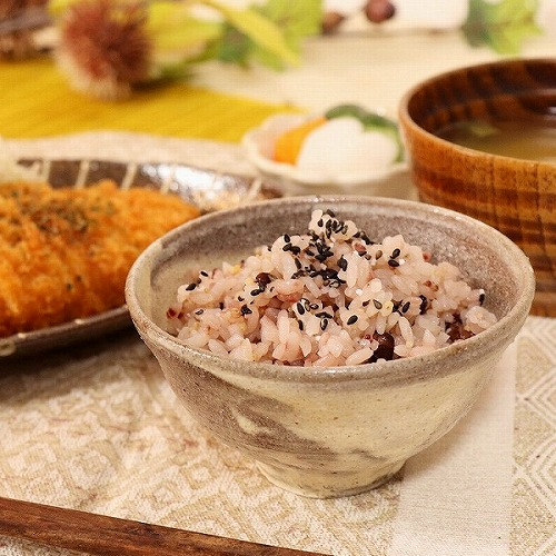 信楽焼 雲海飯碗 w311-06