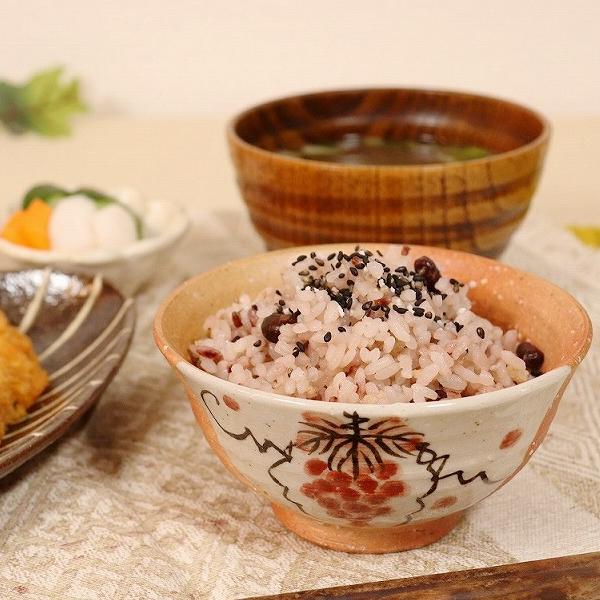 信楽焼 緋色ぶどう(大・小)夫婦飯碗 w309-07_08