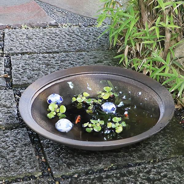 20号金彩水鉢 信楽焼 金魚鉢、メダカ鉢にお勧め 浅型水鉢 陶器鉢 [su-0215]