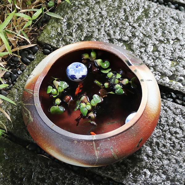 13号火色水鉢 信楽焼 金魚鉢、メダカ鉢にお勧め 陶器 めだか鉢 スイレン鉢 [su-0238]