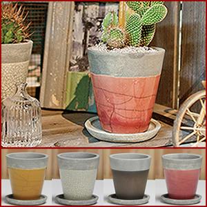 信楽焼パロットポット!山草鉢、サボテン鉢などお好みに合わせてお使いください。[sa-1-1]