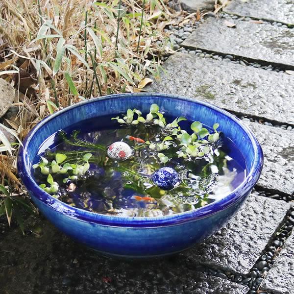 スイレン鉢 水鉢 メダカ鉢 金魚鉢 めだか鉢 ハス鉢 陶器