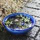 ブルーガラス水鉢 信楽焼 金魚鉢、メダカ鉢にお勧め 睡蓮鉢 スイレン鉢 陶器 鉢 [su-0243]